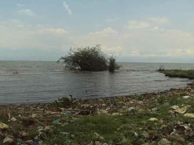 Garbage near the lake