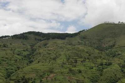 Agriculture Burundi
