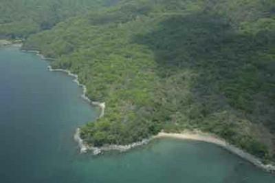 Mahale NP shoreline